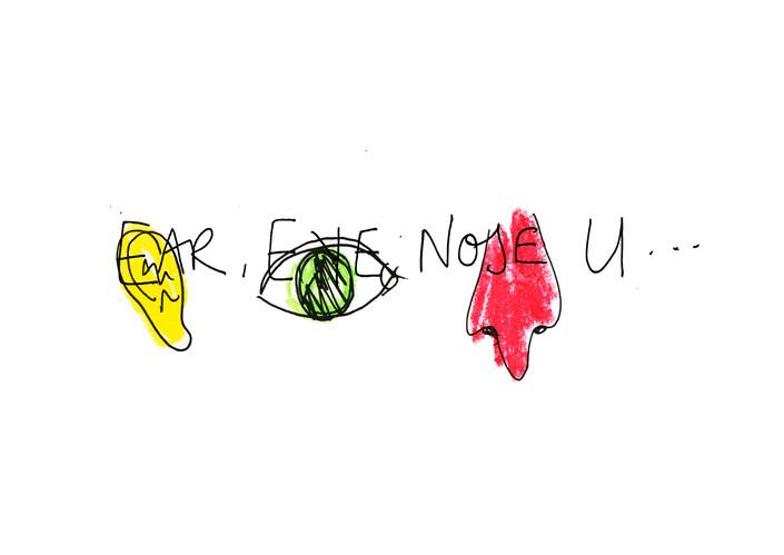 2 EAR EYE NOSE U.jpg
