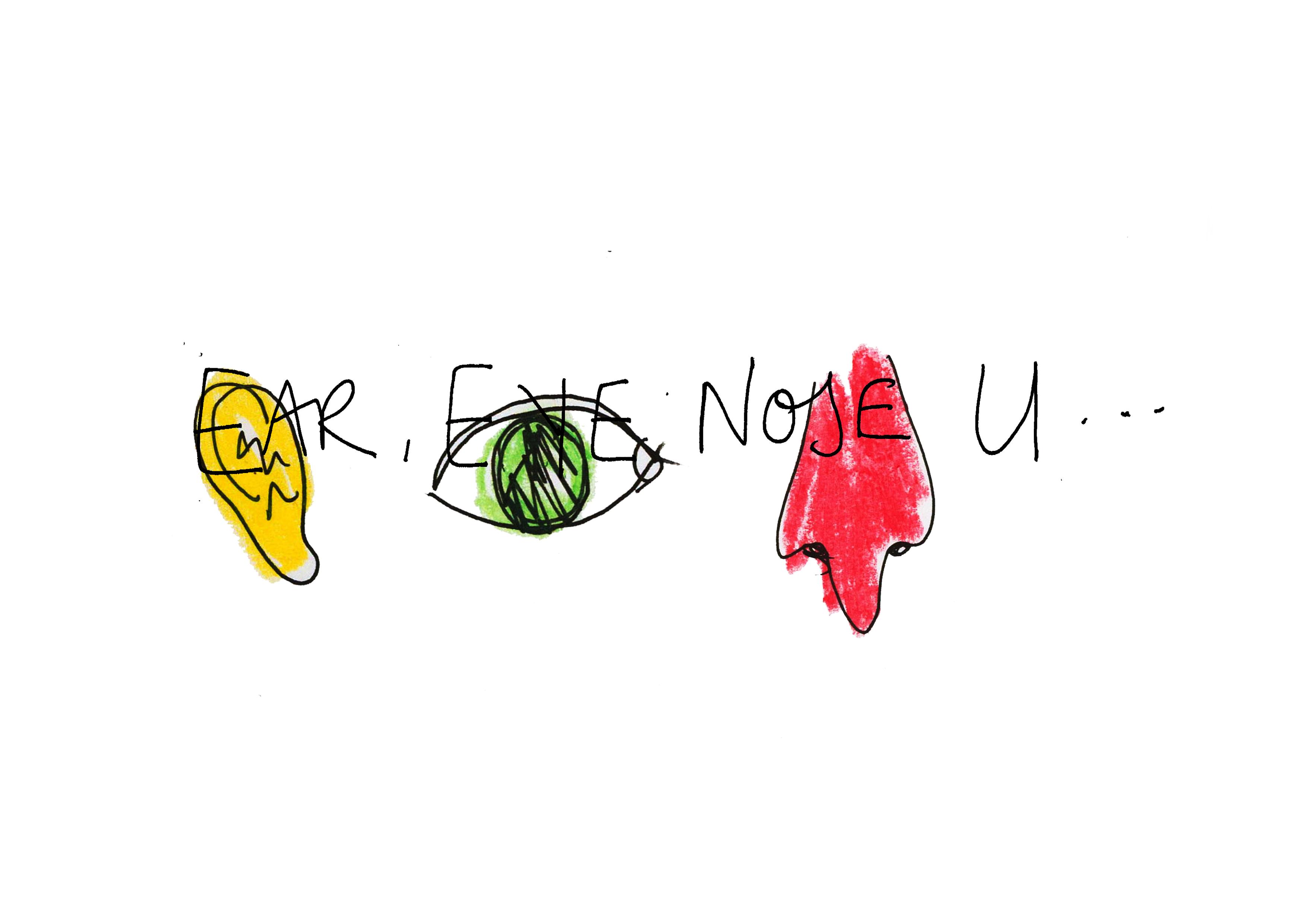 EAR EYE NOSE U