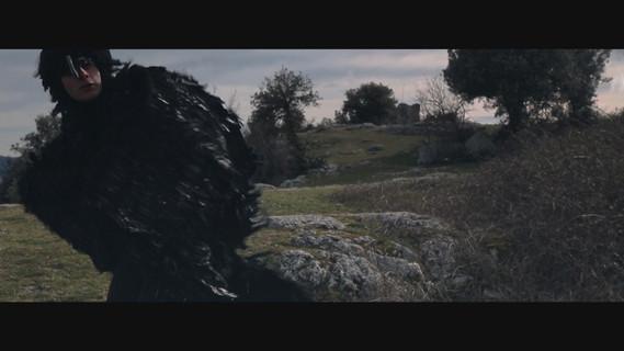Corvus Corax web.mov.01_11_00_23.Immagin