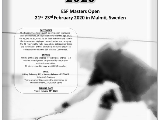 Swedish Masters Open 2020