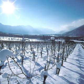 Winter im Kremstal
