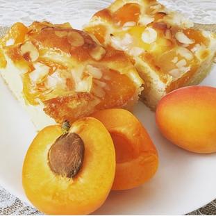 hausgebackener Marillenkuchen