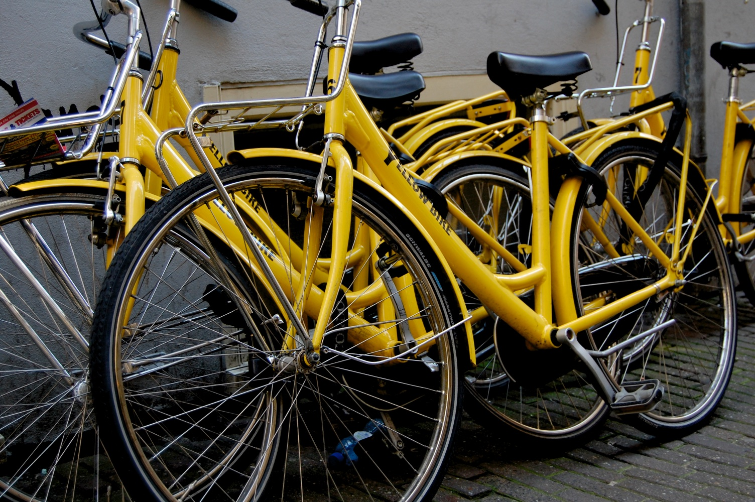 Yellow Bikes In Amsterdam