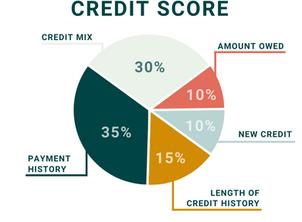 Back to the Basics: Credit Scores 101