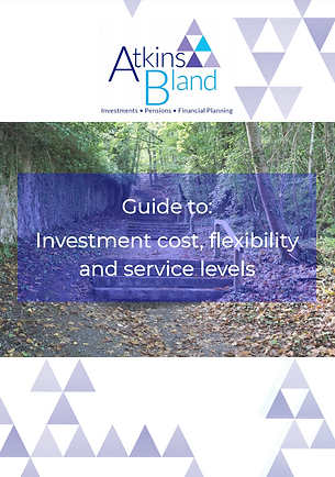 Investment cost, flexibility and service levels - Aug 2020.PNG