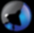 Vmax Group_transaprency-02.png