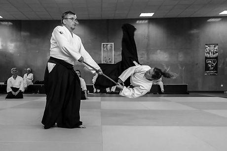 Marlhins Senseï aikido saint georges
