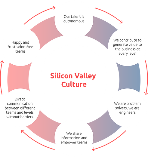 Silicon Valley Culture_.png