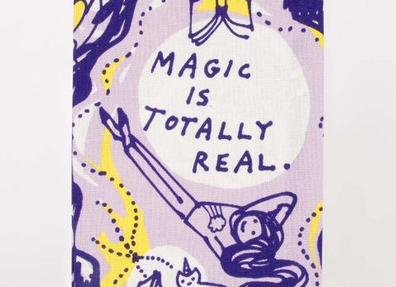 Magical Dish Towel