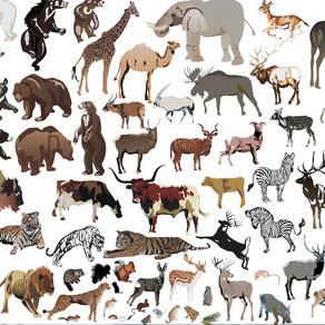 Noms d'animaux et sexisme