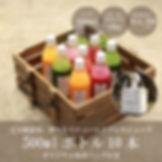 ジュースクレンズ10本セット画像(保冷バッグ付き、14500円).jpg