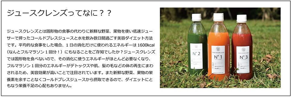 ジュースクレンズとは?.jpg