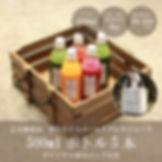 ジュースクレンズ5本セット画像(保冷バッグ付き、9000円).jpg