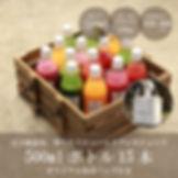 ジュースクレンズ15本セット画像(保冷バッグ付き、20000円).jpg