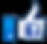 FBLike_Logo_01 copy.png