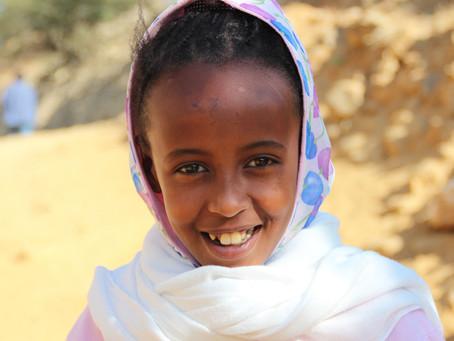 Flygtninge fra Eritrea er en glemt succes