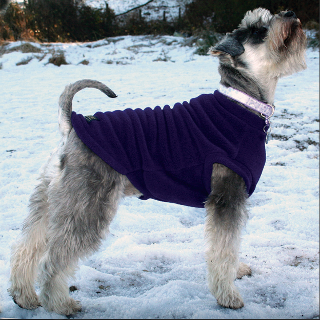 A fleece for your dog to wear in a range of colours and styles