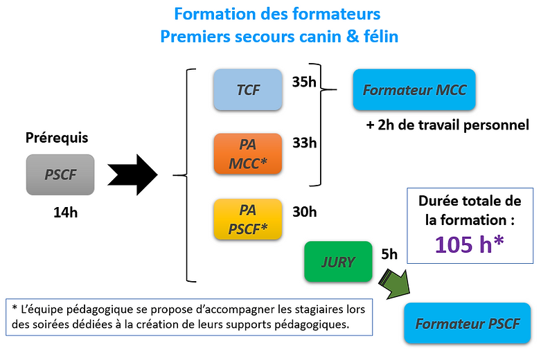 Organigramme stage formateurs.PNG