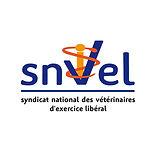 Logo_SNVEL.jpg
