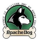 Apache Dog 1.png
