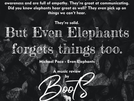 """Music review: A piece of art you don't want to miss. """"Even Elephants"""""""