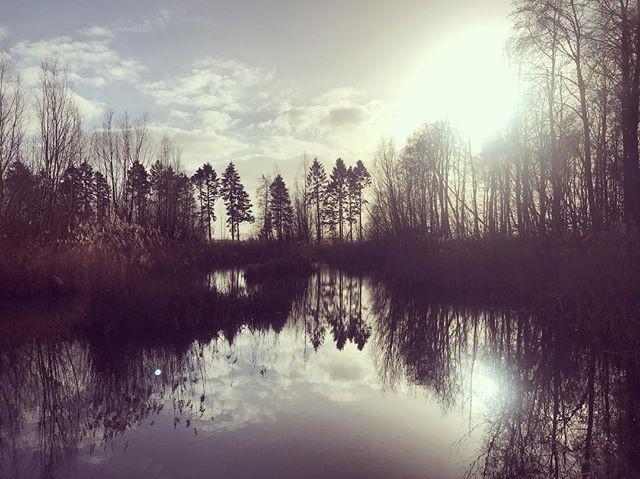 Walking in a dream..._._._._#dutchlandsc