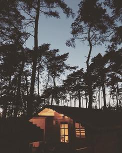 Sweet dreams ✨_._._._#dutchlandscapes #l