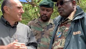 Gorilla et le Parc National de Kahuzi-Biega