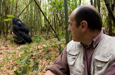 Fabrice-Martinez-Gorilla.jpg