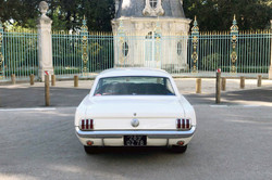 Mustang-Blanche-3