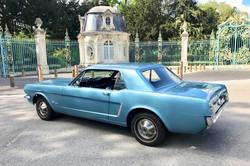Mustang-Bleu-1