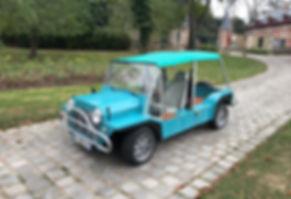 Mini Moke 2.JPG