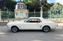 Mustang-Blanche-1