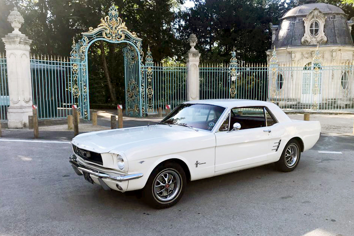 Mustang-Blanche-2