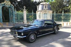 Mustang-noire-2