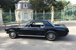 Mustang-noire-7