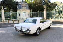 Mustang-Blanche-5
