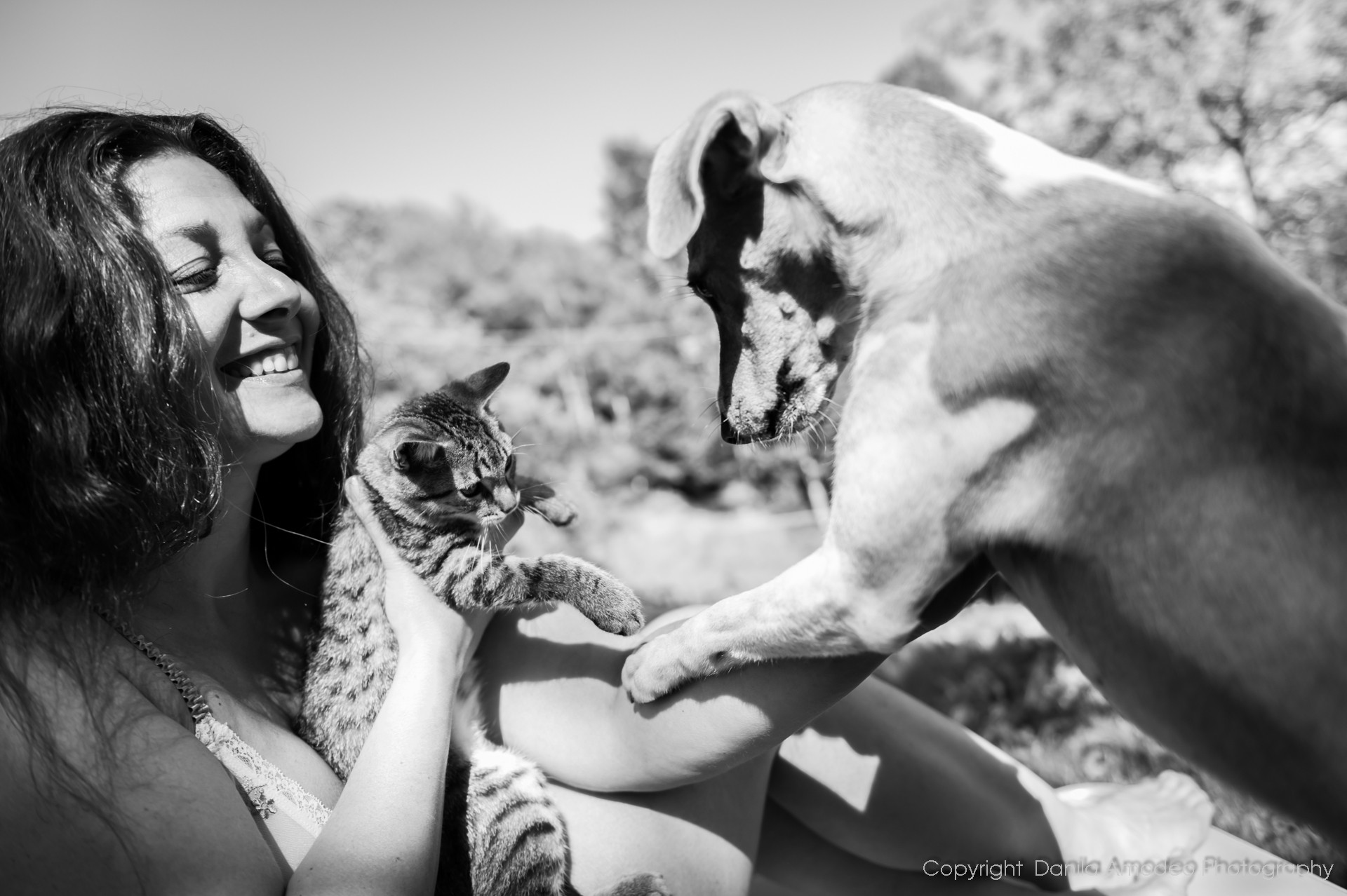 Pets & Family Photography