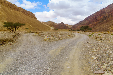 Nahal Shlomo (desert valley). Eilat Mountains, Israel