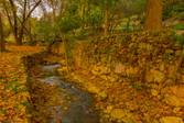 En Hemed National Park, Israel
