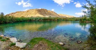 Brackish water pool, in Einot Tzukim (Ein Feshkha) Nature Reserve, Israel