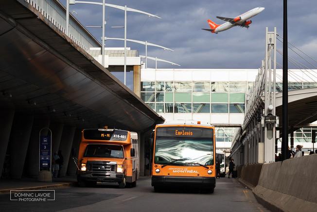 Skyport_3.jpg