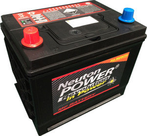Neuton Power NS50P 85R550 12V 50Amp