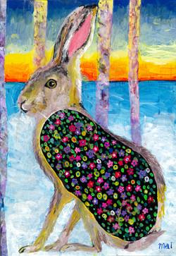 rabbit in dawn