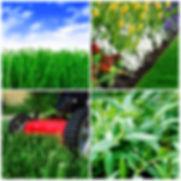 4-pic-composite.jpg