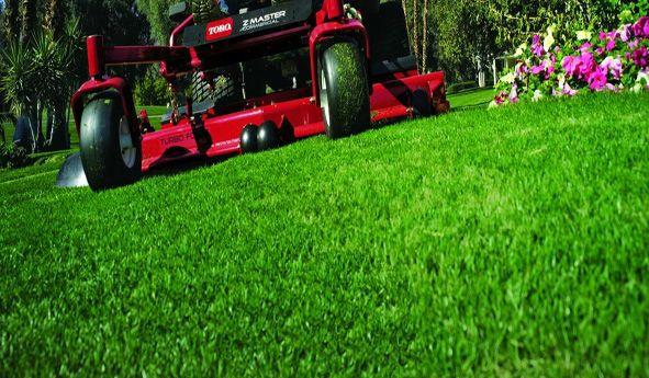 Lawn Care Estimate