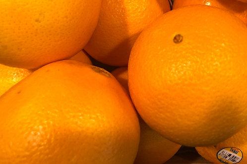 Oranges- Navel