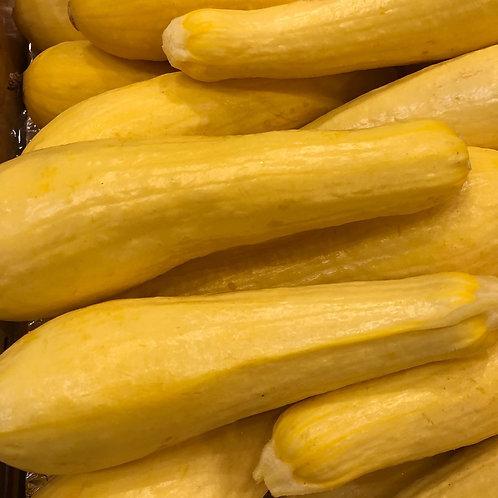 Squash- Yellow