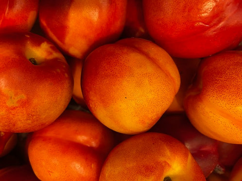 Nectarines- LOCAL