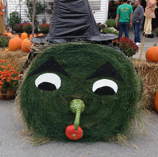 Hay Bale Witch 2018